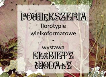 Wystawa E. Wodała